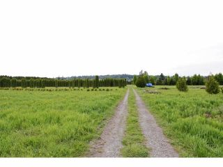"""Photo 10: 7200 216TH Street in Langley: Willoughby Heights Land for sale in """"Milner"""" : MLS®# F1411651"""