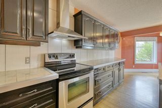 Photo 19: 143 Chapman Way SE in Calgary: Chaparral Detached for sale : MLS®# A1116023
