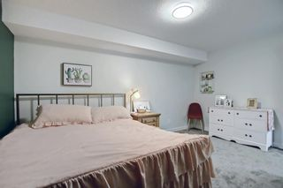 Photo 36: 150 Speargrass Crescent: Carseland Detached for sale : MLS®# A1146791