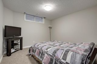Photo 23: 74 Evansfield Park NW in Calgary: Evanston House for sale : MLS®# C4187281