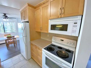 """Photo 3: 207 1025 CORNWALL Street in New Westminster: Uptown NW Condo for sale in """"CORNWALL PLACE"""" : MLS®# R2523228"""