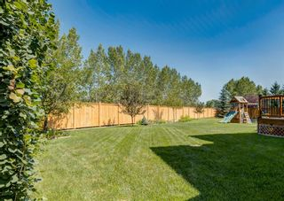 Photo 43: 176 Hawkmere Way: Chestermere Detached for sale : MLS®# A1129210