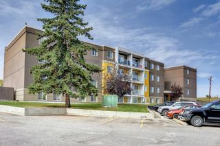 Main Photo: 307 4455A Greenview Drive NE in Calgary: Greenview Apartment for sale : MLS®# A1151041