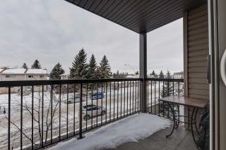 Photo 31: 324 1180 HYNDMAN Road in Edmonton: Zone 35 Condo for sale : MLS®# E4230211