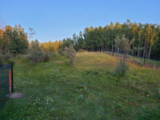 Photo 3: 197 Rolling  Acres Drive in Rural Rocky View County: Rural Rocky View MD Residential Land for sale : MLS®# A1142888
