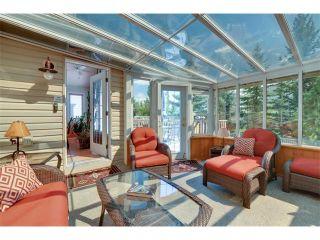 Photo 32: 83 MT SELKIRK Close SE in Calgary: McKenzie Lake House for sale : MLS®# C4066159