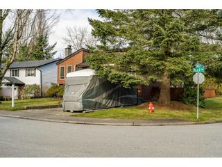 Photo 36: 14951 92A Avenue in Surrey: Fleetwood Tynehead House for sale : MLS®# R2539552