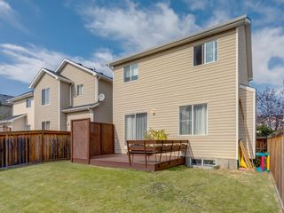 Photo 38: 17 ROYAL ELM Way NW in Calgary: Royal Oak Detached for sale : MLS®# A1034855