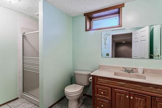 Photo 32: 139 Appletree Close SE in Calgary: Applewood Park Detached for sale : MLS®# A1022936