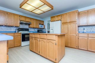 Photo 6: 14391 77A Avenue in Surrey: East Newton House for sale : MLS®# R2149252