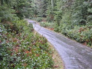 Photo 15: 1309 Gorge Harbour Rd in : Isl Cortes Island Land for sale (Islands)  : MLS®# 868715