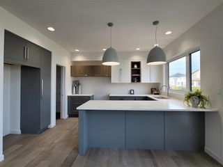 Photo 11: 209 Cherrywood Road in Winnipeg: Bridgwater Trails Residential for sale (1R)  : MLS®# 202023529