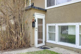 Photo 16: 931 29 Street NW in Calgary: Parkdale Duplex for sale : MLS®# A1099502