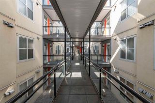 Photo 3: 311 10147 112 Street in Edmonton: Zone 12 Condo for sale : MLS®# E4238427