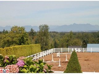 Photo 9: 20486 1ST Avenue in Langley: Campbell Valley House for sale : MLS®# F1114213