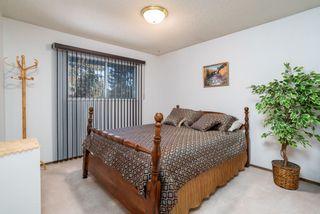 Photo 24: 10456 33 Avenue in Edmonton: Zone 16 House for sale : MLS®# E4225816