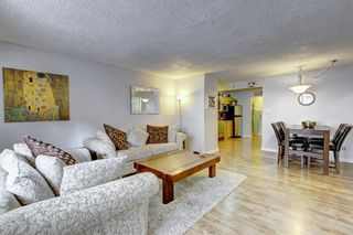 Photo 9: 8 6827 Centre Street NW in Calgary: Huntington Hills Apartment for sale : MLS®# A1133167