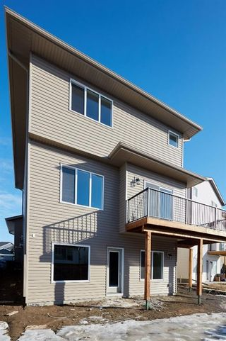 Photo 38: 51 Walden Place SE in Calgary: Walden Detached for sale : MLS®# A1051538