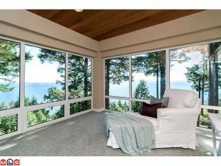 Photo 8: 1455 126A Street in Surrey: Crescent Bch Ocean Pk. House for sale (South Surrey White Rock)  : MLS®# F1227438