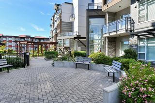 Photo 23: 305 1016 Inverness Rd in Saanich: SE Quadra Condo for sale (Saanich East)  : MLS®# 887970