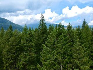 Photo 33: 1969 SANDY ROAD in Castlegar: Vacant Land for sale : MLS®# 2461033