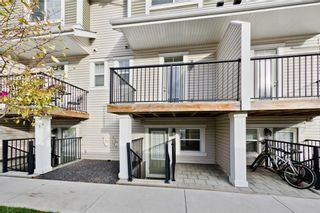Photo 9: 172 NEW BRIGHTON PT SE in Calgary: New Brighton House for sale : MLS®# C4142859