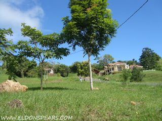 Photo 3: Trinity Hills Valley - Lot for Sale