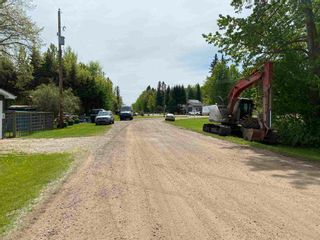 Photo 45: 306 CRYSTAL SPRINGS Close: Rural Wetaskiwin County House for sale : MLS®# E4247177