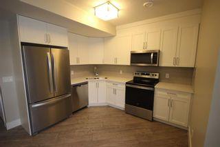Photo 17: 10604/06/08 61 Avenue in Edmonton: Zone 15 House Triplex for sale : MLS®# E4225377