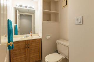 Photo 41:  in Edmonton: Zone 16 House for sale : MLS®# E4263667
