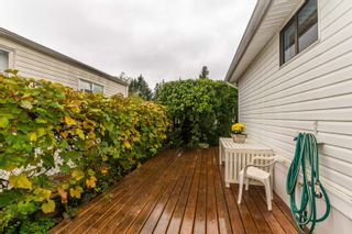 """Photo 33: 101 6338 VEDDER Road in Chilliwack: Sardis East Vedder Rd Manufactured Home for sale in """"Maple Meadows"""" (Sardis)  : MLS®# R2625735"""