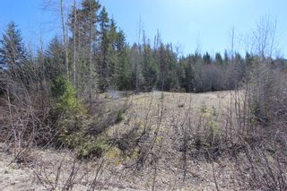 Photo 3: Lot 11 Ivy Road: Eagle Bay Vacant Land for sale (South Shuswap)  : MLS®# 10229941