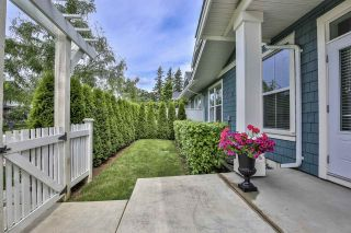 """Photo 33: 41 22057 49 Avenue in Langley: Murrayville Townhouse for sale in """"HERITAGE"""" : MLS®# R2493001"""