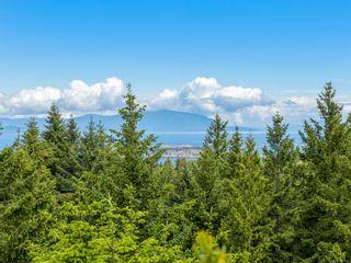 Photo 48: 6620 David Pl in : Na Upper Lantzville House for sale (Nanaimo)  : MLS®# 882647