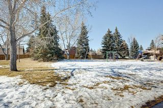 Photo 30: 35 DEERMOSS Place SE in Calgary: Deer Run Detached for sale : MLS®# C4233869