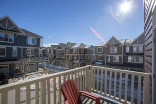 Photo 28:  in Calgary: Evanston Row/Townhouse for sale : MLS®# A1073817