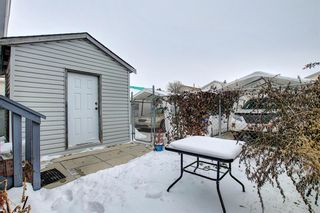 Photo 37: 47 Appleburn Close SE in Calgary: Applewood Park Detached for sale : MLS®# A1049300