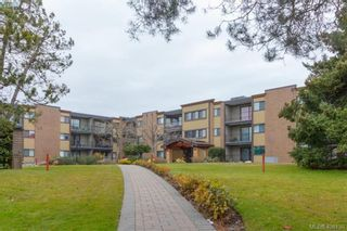 Photo 1: 107 1870 McKenzie Ave in VICTORIA: SE Lambrick Park Condo for sale (Saanich East)  : MLS®# 807101