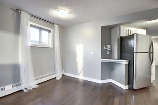 Photo 9: 402 534 20 Avenue SW in Calgary: Cliff Bungalow Apartment for sale : MLS®# A1065018