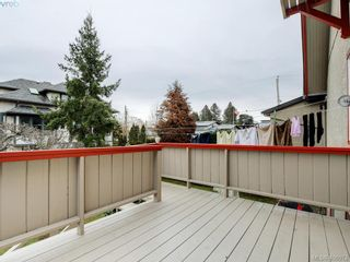 Photo 34: 453 Moss St in VICTORIA: Vi Fairfield West House for sale (Victoria)  : MLS®# 806984