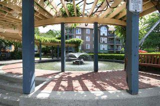 Photo 5: 202 3065 PRIMROSE LANE in Coquitlam: North Coquitlam Condo for sale : MLS®# R2072047