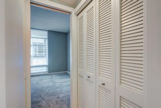 Photo 17: 506 215 13 Avenue SW in Calgary: Beltline Apartment for sale : MLS®# A1105298