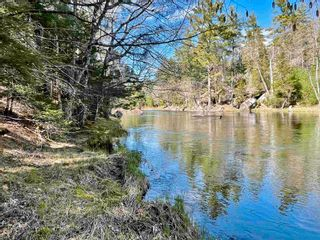 Photo 9: Lot VH-1 Highway 10 in Meisners Section: 405-Lunenburg County Vacant Land for sale (South Shore)  : MLS®# 202111350