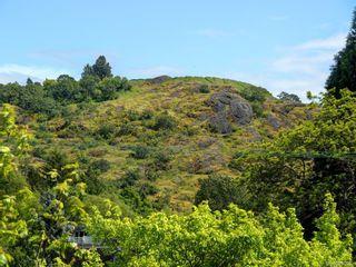 Photo 20: 409 1694 Cedar Hill Cross Rd in Saanich: SE Mt Tolmie Condo for sale (Saanich East)  : MLS®# 840053
