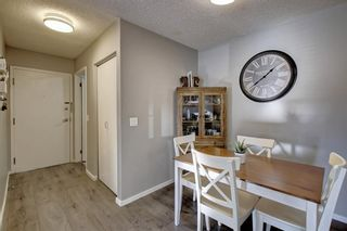 Photo 10: 2011 2011 Edenwold Heights NW in Calgary: Edgemont Apartment for sale : MLS®# A1091382