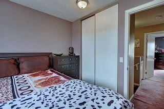 Photo 26: 307 FALTON Drive NE in Calgary: Falconridge Detached for sale : MLS®# C4238621
