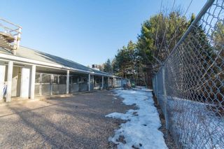 Photo 25: 10301 Highway 201 in Meadowvale: 400-Annapolis County Commercial  (Annapolis Valley)  : MLS®# 202106043