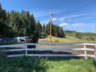 Photo 31: For Sale: 17 Burmis Mountain Estates, Rural Pincher Creek No. 9, M.D. of, T0K 0C0 - A1141426
