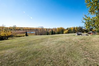 Photo 22: 13 260001 TWP RD 472: Rural Wetaskiwin County House for sale : MLS®# E4265255