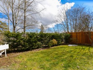 Photo 6: B 190 Cliffe Ave in COURTENAY: CV Courtenay City Half Duplex for sale (Comox Valley)  : MLS®# 843447